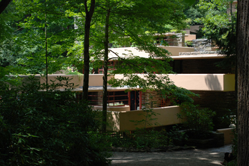 "F. L. WRIGHT, BEAR RUN: ""GROWING EASILY FROM ITS SITE"""