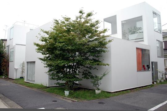 "R. NISHIZAWA,TOKYO: ""THE QUESTION OF THE CORNER: A TREE"""