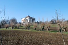 "A. PALLADIO, VICENZA:  ""ON THE HILL"""