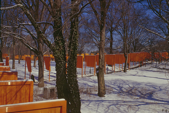 "CHRISTO AND JANNE-CLAUDE, NEW YORK: ""DANCING AROUND TREES"""